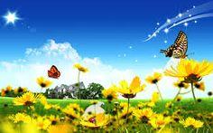 pinterest summer - Cerca con Google