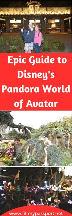 Everything About Disney's Pandora World of Avatar