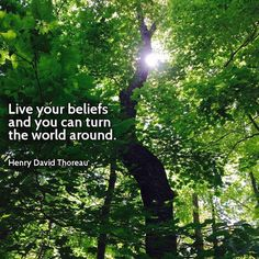 Live your beliefs and you can turn the world around - Henry David Thoreau Quotes