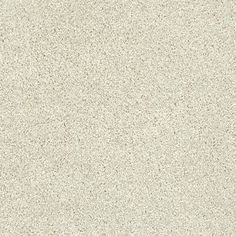 Charmingly Soft by Tigressa from Carpet One