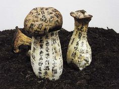 """""""Mushroom Mantra,"""" Charwei Tsai (2008)."""