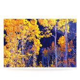 Found it at Wayfair - KESS InHouse Aspen Trees Floating Art Panel