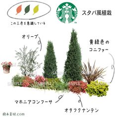 Pallets Garden, Pallet Gardening, Facade House, Green Garden, Fairy Land, Balcony Garden, Garden Styles, Garden Planning, Garden Paths