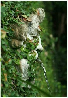 Stone face water spout.