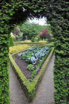 Jardin Floral de Digeon - Flip - Picasa Webalbums
