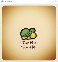 Turtlees