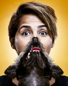 Cat Beards Dog Beards Oh my! by Timothy Bailey, via Behance Beard Pictures, Cool Pictures, Dog Bearding, Cat Beard, Girl And Dog, Photo Manipulation, Amazing Photography, Best Dogs, Dog Lovers