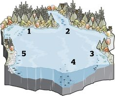 Where to Find Fish When Temperatures Start to Drop | Field & Stream