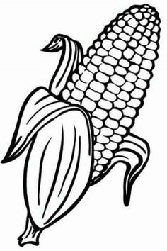 Free Sweet Corn Coloring Pages Printable - Free Coloring Sheets Originally from the mountainous valleys of Mexico, corn has evolved over nine millennia. First consumed in its primary form, the teosinte, corn will undergo sig Vegetable Coloring Pages, Fruit Coloring Pages, Colouring Pages, Coloring Pages For Kids, Coloring Books, Image Fruit, Free Coloring Sheets, Sweet Corn, Autumn Art
