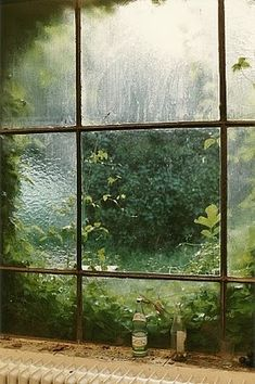 Da minha janela eu posso ver ...