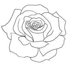 rose tattoo outline - Google Search