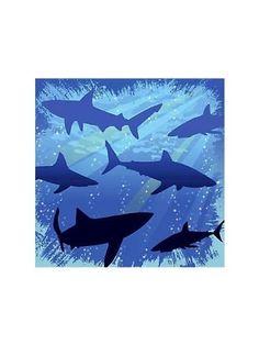 Creative Converting Shark Splash Birthday Beverage Napkins, 16 Count by Creative Converting $3.90