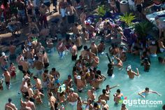 The 11 Best Pool Parties in Las Vegas, Ranked | Oyster.com