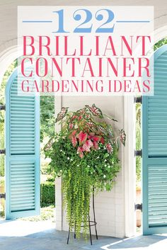 122 Container Gardening Ideas
