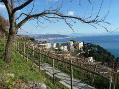 Italy Vietri sul Mare