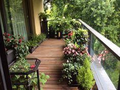 Balcon fleuri outdoors в 2019 г. balcony garden, balcony и s Small Balcony Design, Small Balcony Garden, Small Balcony Decor, Balcony Plants, House Plants Decor, Small Space Gardening, Terrace Garden, Indoor Garden, Small Balconies