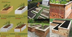 Planting on raised garden beds brings many benefits compared to planting on the ground. But the most crucial one is you can grow a garden even in a Cheap Raised Garden Beds, Plants For Raised Beds, Raised Vegetable Gardens, Building A Raised Garden, Vegetable Garden Design, Boxwood Landscaping, Backyard Landscaping, Soil Improvement, House Plants Decor