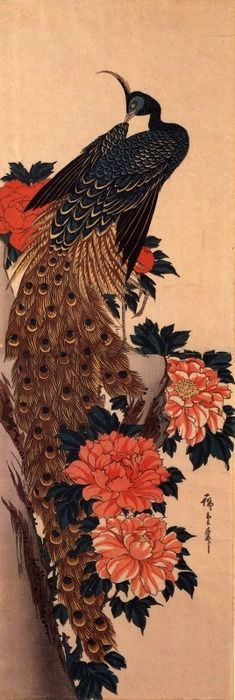 Hiroshige: Peacock