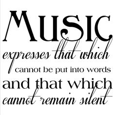 Have always found this quote interesting.  It is actually the silent spaces between the notes & words that gives music its most eloquent expression. ~~