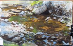A pool along Vernooy Kill, New York. Casein painting by James Gurney, 5x8 inches.