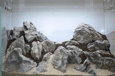 Artificial Rocks, Aquarium Setup, Discus, Planted Aquarium, Terrarium, Fresh Water, Lion Sculpture, Aquascaping, Scp