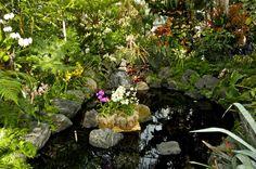 Üppig bewachsener Gartenteich mit Orchideen in der Mitte