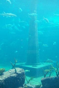 The Dig Atlantis, Atlantis Resort, Paradise Island, Bahamas