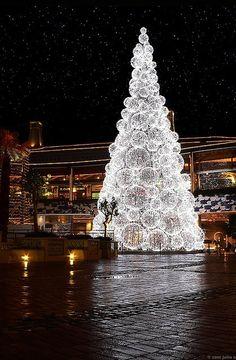 Watery Christmas tree