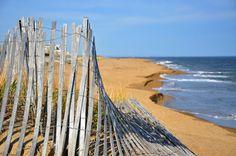 beach fence ocean plum island beach photography by erynephoto, $5.00