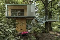 The Urban Tree House