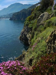 The island of Ischia.. pure Italy.  Paradise.