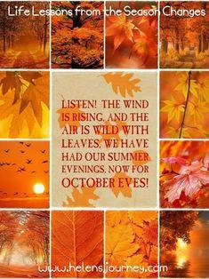 October Hello Autumn, Autumn Day, Autumn Leaves, Autumn Scenes, Hello October, Seasons Of The Year, Happy Fall Y'all, Fall Harvest, Fall Season
