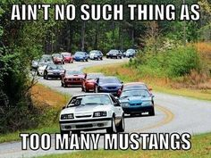 Ain't no such thing as too many Mustangs... So true!
