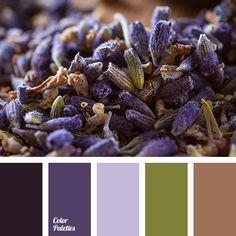 brown color, color matching, color of greens, dark purple, green color, lavender color, olive color, pale purple, purple color, shades of purple.