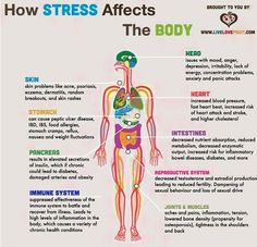 14 Effective natural remedies for stress & anxiety