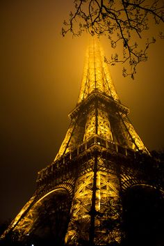 eiffel tower ~ all aglow