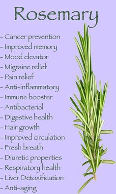 Health Benefits of Rosemary - essential oils are the best @ http://www.cre8-health.com/