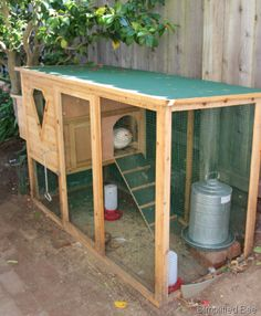 backyard chicken coop -