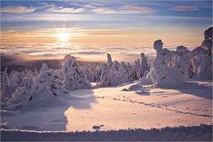 30.01.2013  Winterlandschaft (Foto von: Eingesandt von: henrik2010)