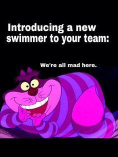 Cheshire Cat - Alice in Wonderland Swimming Funny, I Love Swimming, Competitive Swimming, Synchronized Swimming, Swimmer Memes, Swimmer Problems, Girl Problems, Cheshire Cat Alice In Wonderland, Swim Mom