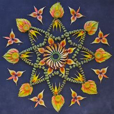 Kathy Klein - Artist's wildflower mandalas are divine offerings from nature