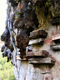 Wuyi Mountain ~ These mysterious hanging coffins are located in the Fujian Province. It is an ancient Asian funeral custom. They are said to appear in the Chinese history, as early as in the Zhou Dynasty (1027-777BC)