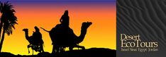 Desert Eco Tours - Jeep camel hiking desert tours to Jordan petra Israel Eilat Negev Egypt Sinai Western Desert. trips to Jerusalem Cairo Wadi Rum, hotels in Eilat Israel Petra Sinai Cairo. Mitzpe Ramon Judean desert luxor Aswam Amman