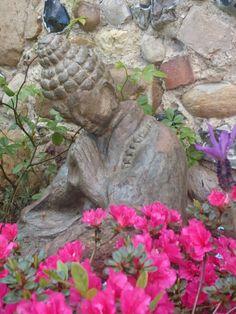 Praying Buddha amongst the flowers