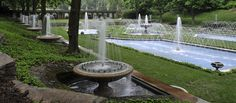 Summer Spectacular | Longwood Gardens