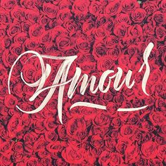 Let that special person (or object/pet/whatever we don't discriminate) know you love them french style. Lettering by @hellonaniii  --  #typegang to be featured  --  #amour #typography #flower #bonheur #lettering #handlettering #flowerstagram #type #goodtype #thedailytype #typespire #floral #lover #couples