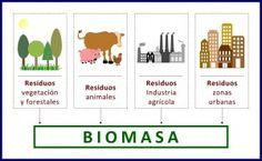 La energía de la Biomasa. #Biomasa #Energías #Renovables