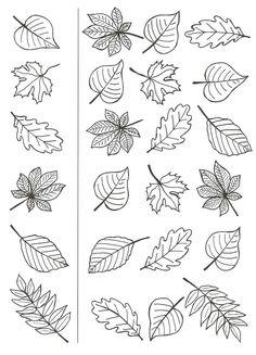 Feuille auto me Autumn Crafts, Autumn Art, Thanksgiving Crafts, Autumn Activities, Preschool Activities, Art For Kids, Crafts For Kids, Leaf Template, Templates