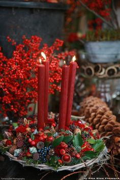 The Zita Elze shop is adrift with the scent of Christmas: a rich blend of velvety red roses, sweet narcissi, hyacinths, winter flowering jasmine and the most divine tuberose, with subtle notes of pine, cinna...