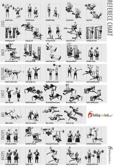 Google Image Result for http://tongginghill.com/wp-content/uploads/2012/02/body-building-exercise-chart.jpg